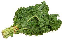 Kale - Copy
