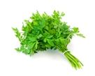 parsley - Copy